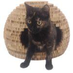Кошачий дом из картона